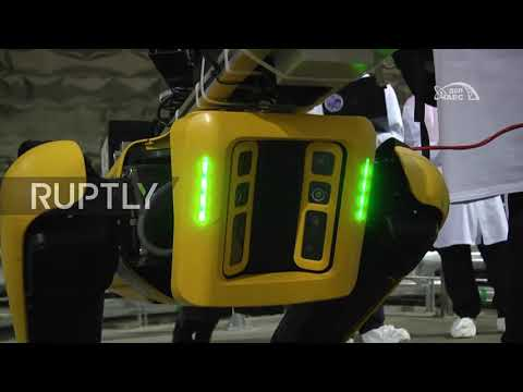 Robot dog sniffs out radiation in Ukraine's Chernoby