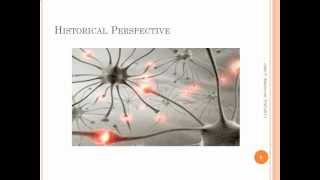 Neuroscience and Relationship Lecture 2