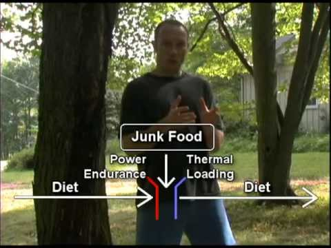 How I EAT JUNK FOOD, yet still BURN FAT and have abs!