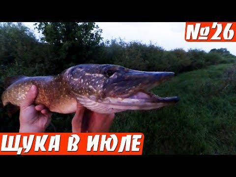 ловля щуки на реке в июне на спиннинг видео
