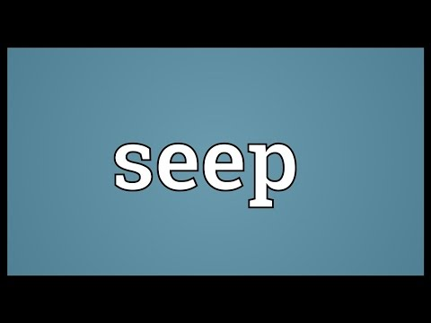 Seep Meaning
