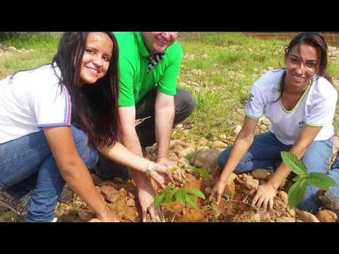 Conheça os cursos superiores ofertados pelo IFMT São Vicente