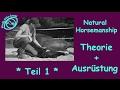 Natural Horsemanship für Einsteiger *** Teil 1 * **