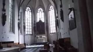 Mauritz Orgel 2009.wmv