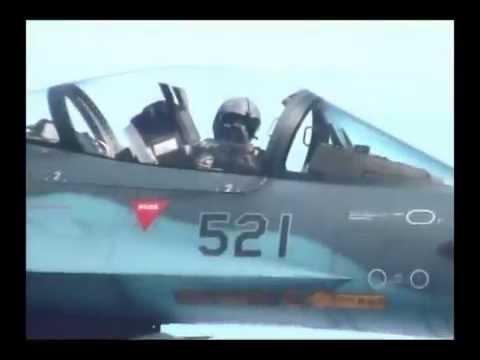 Japan Air Self-Defense Force(航空自衛隊)