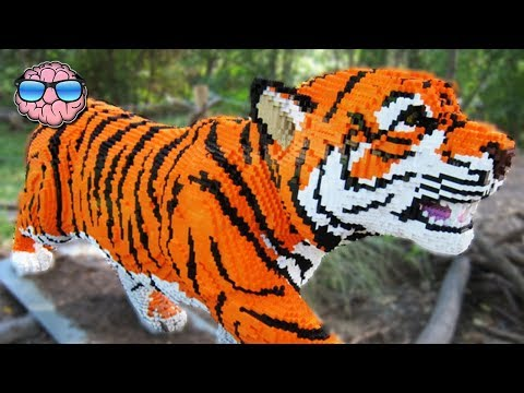 Video Top 10 MOST AMAZING LEGO Creations download in MP3, 3GP, MP4, WEBM, AVI, FLV January 2017