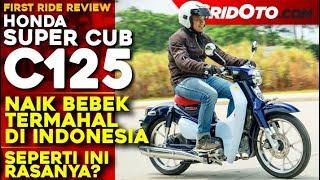 Video Bebek Termahal di Indonesia! Honda Super Cub C125 l First Ride Review l GridOto MP3, 3GP, MP4, WEBM, AVI, FLV Desember 2018