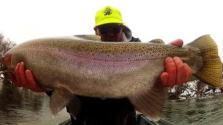 Winter Steelhead Fishing 2015