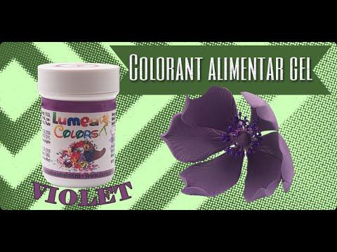 Colorant Alimentar gel Lumea Basmelor violet