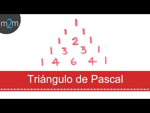 Pascalsches Dreieck und Newtonsche Bionialformel