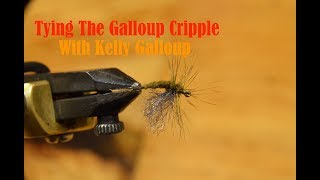 Video Tying the Galloup Cripple with Kelly Galloup MP3, 3GP, MP4, WEBM, AVI, FLV Desember 2018