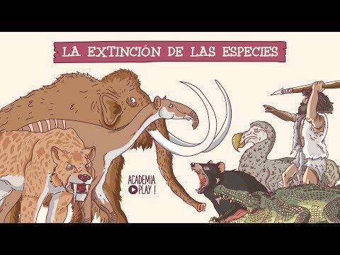 Sapiens: de animales a dioses. Una historia de extinción.