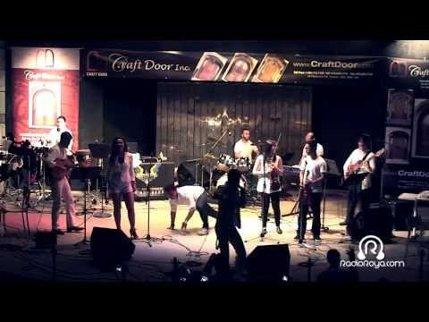 White Cat Live in Persian Family Day 2013