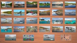 Реальная Рыбалка Ключ Скачать - фото 9