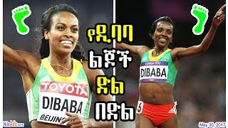 Nonton                                                      The Dibaba Family Are The Winners   Dw Film Subtitle Indonesia Streaming Movie Download