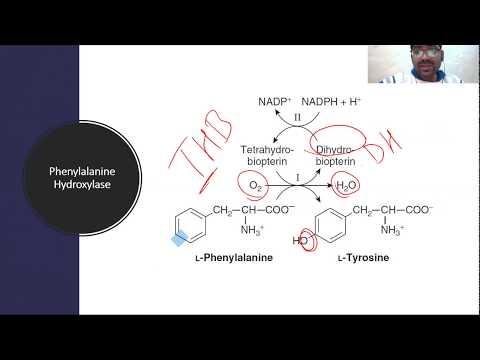Tetrahydrobiopterin and Segawa Syndrome
