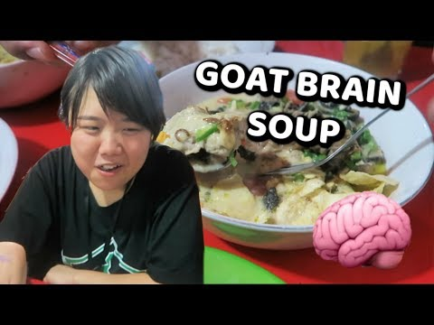 GOAT BRAIN TASTE TEST! | Exotic Indonesian Cuisine