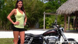 10. 2011 Harley-Davidson XL883L Sportster 883 Super Low for sale