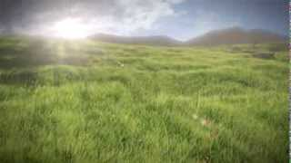 Realistic Grass Field LWP YouTube video