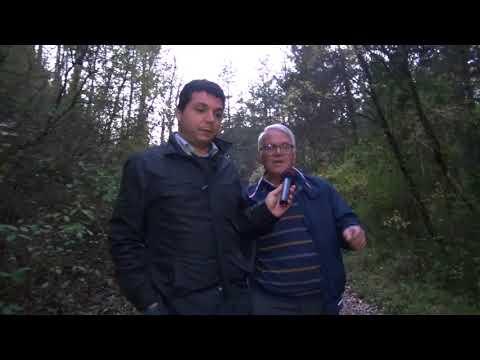 Ferrovie dimenticate, Arezzo-Fossato Di VIco itinerario da recuperare
