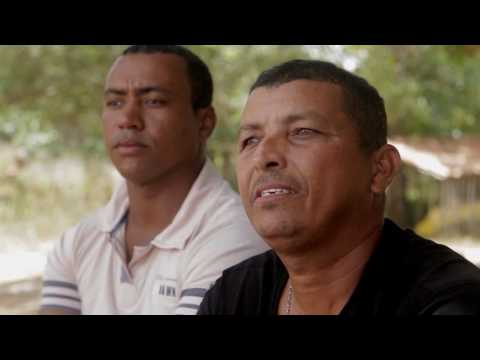 Brasil Profundo: jovens sergipanos de Amparo de São Francisco