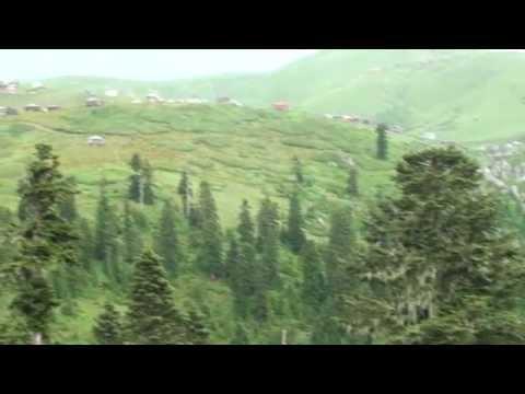 Горы Грузии природа. საქართველოს მთაში