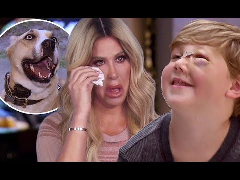 Kim Zolciak and Kroy come face to face with pet dog Sinn (видео)