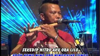 Video Eny Sagita - Pantai Klayar [OFFICIAL] MP3, 3GP, MP4, WEBM, AVI, FLV Mei 2019