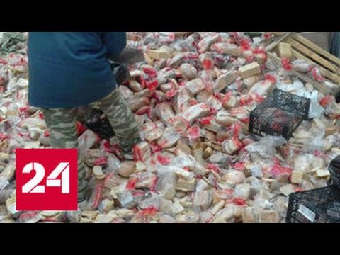 Хлеб на свалку отправляют тоннами - DomaVideo.Ru