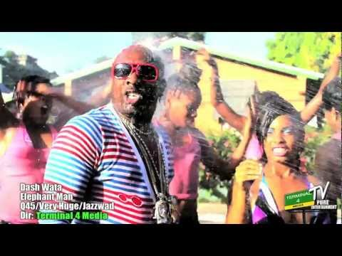 Dash Wata - Elephant man (Official Video)