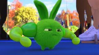 Video Sunny Bunnies   Ich bin der Stärkste!   Karikatur für Kinder   WildBrain MP3, 3GP, MP4, WEBM, AVI, FLV Juli 2019