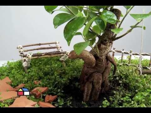 Jardines miniatura videos videos relacionados con - Jardines zen miniatura ...