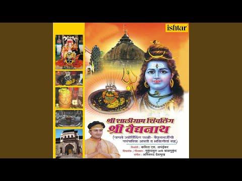 (Shaligram Shivling Shri Vaidyanath - Duration: 4:09.)