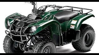 3. 2004 Yamaha Grizzly 125/Breeze 125 Timing