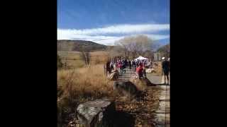 Veterans Run with CRMA - 36.5 weeks Pregnant
