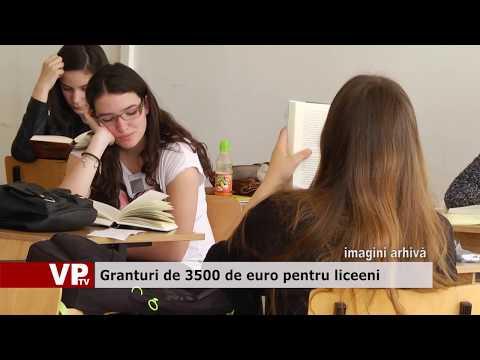 Granturi de 3500 de euro pentru liceeni