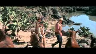 The Train Robbers Trailer 1973 YouTube