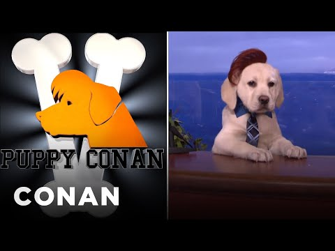 Puppy Conan V Featuring Puppy Sia & Puppy Larry King - CONAN on TBS