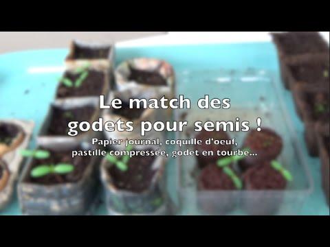 Comparatif des godets pour semis dégradables | tourbe, fibre de coco, papier journal, coquille d'œu