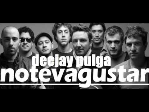 NTVG- enganchado full 20/16-Deejay Pulga (видео)