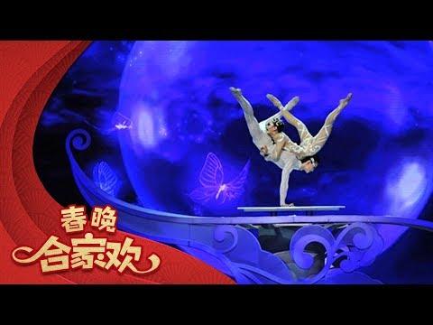2014 央视春节联欢晚会 杂技《梦蝶》 张婉 李童  CCTV春晚