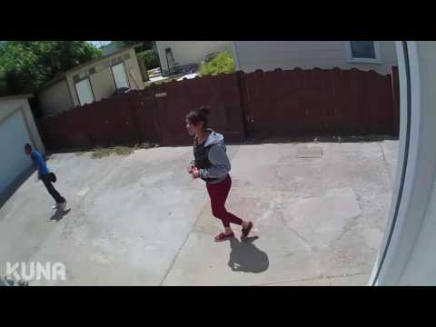 Video Kuna Captures Activity in Front and Backyard download in MP3, 3GP, MP4, WEBM, AVI, FLV January 2017
