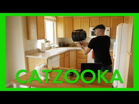 Catzooka Cat Launcher