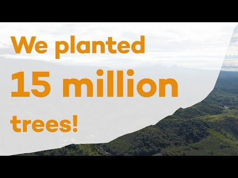 15 Million Trees Planted with Ecosia!