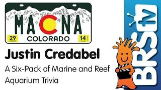 A six pack of marine and reef aquarium trivia by Justin Credabel | MACNA 2014
