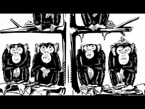 Beispielvideo für Animation