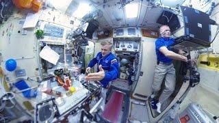 Космос 360: как отмечали новогодние праздники на МКС