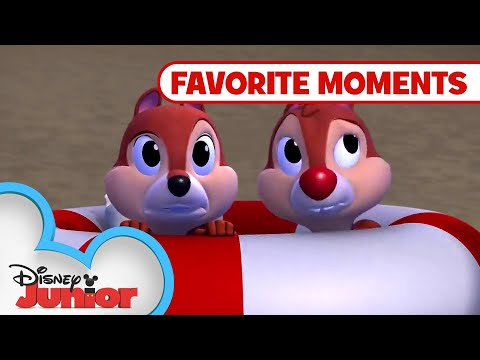Nutty Tales Compilation! Part 3 | Chip N Dale Nutty Tales | Disney Junior