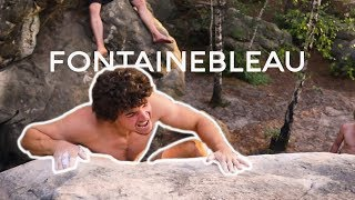 Summer Times in Fontainebleau   Outdoor Bouldering by BlocBusters