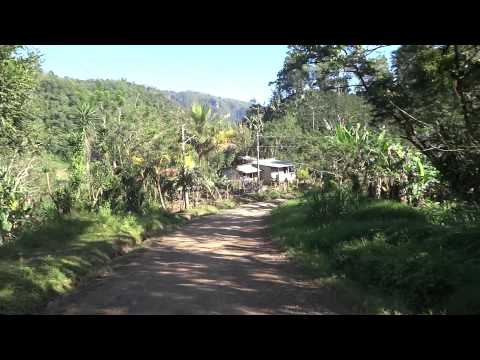 Honduras countryside - Santa Barbara mountains, Quetzal Trail